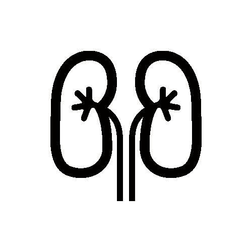 腎臓 モノクロアイコン素材