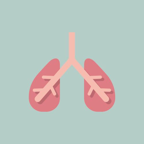 肺 フラットデザイン カラーイラスト アイコン フリー素材