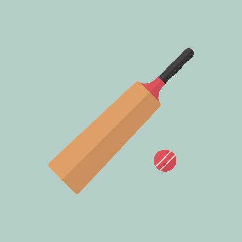 クリケット カラーアイコン フリー素材